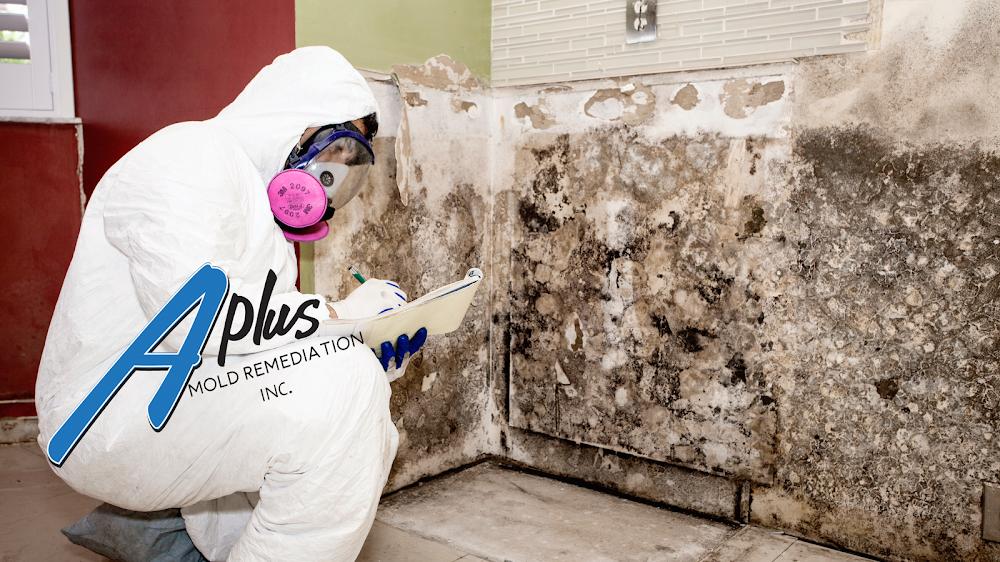 A Plus Mold Remediation Inc.