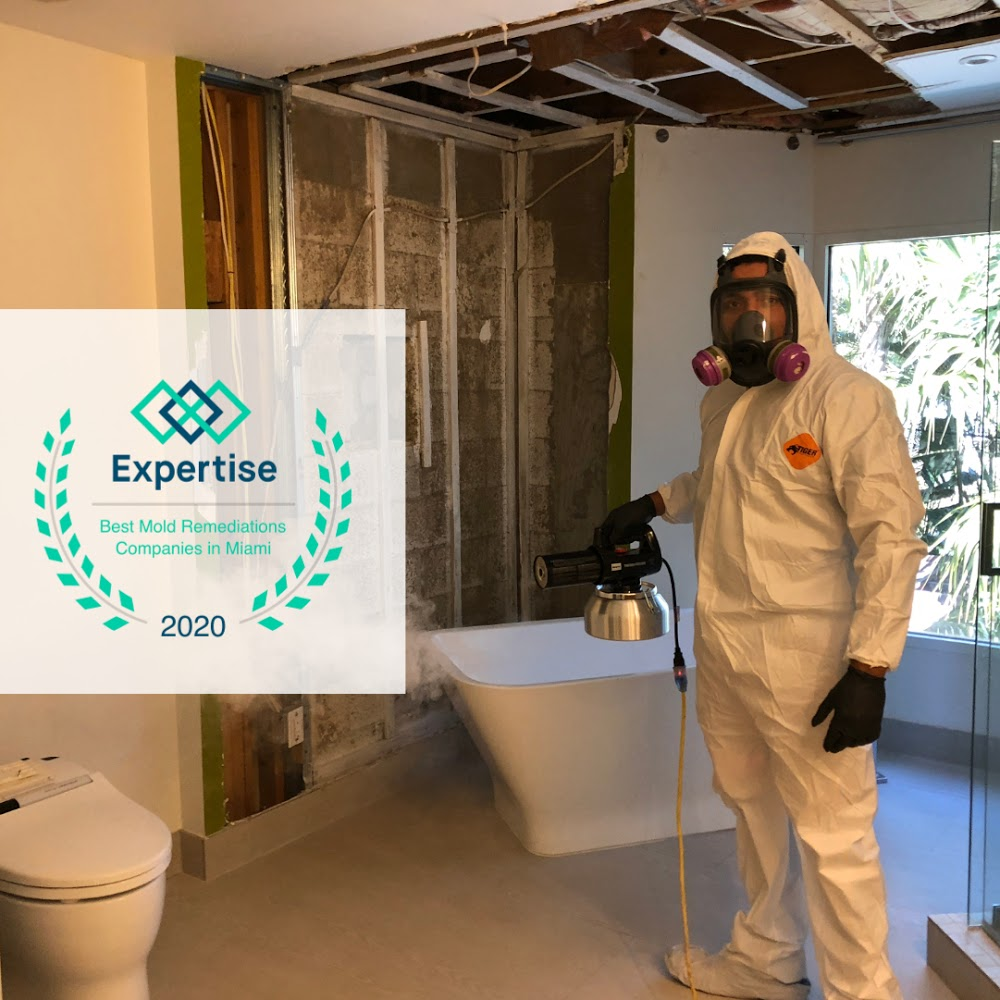 Instacure Mold Remediation