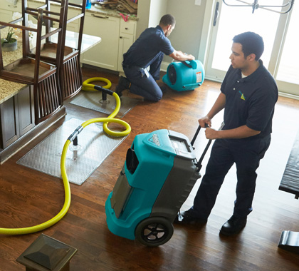 Mold Inspection Miami – Mold Experts Now