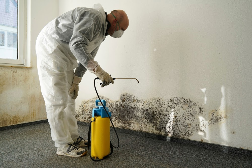 Mold Remediation and Water Restoration Pros