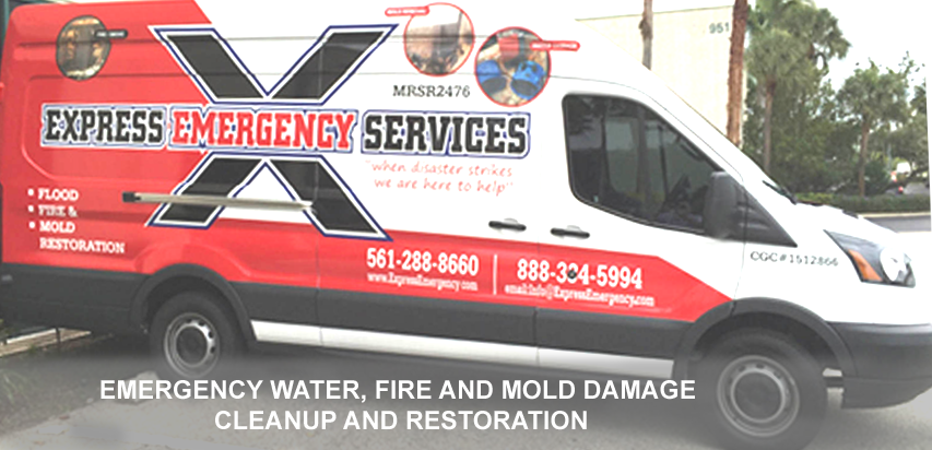Mold Remediation of Palm Beach County