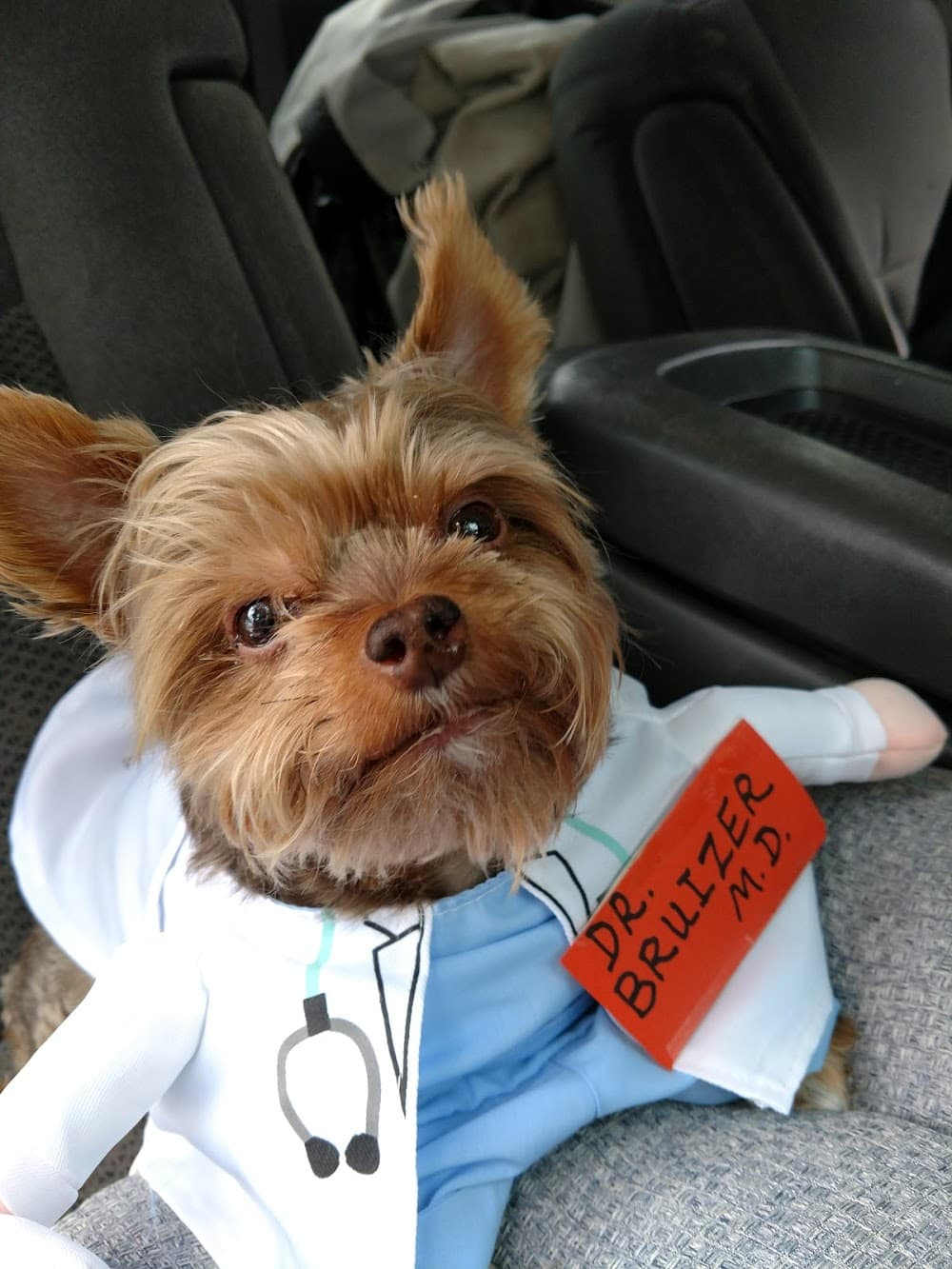 Narcoossee Animal Hospital