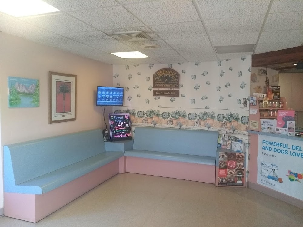Old Cutler Animal Clinic