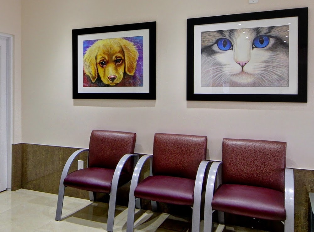 Pet Lovers Animal Clinic @SW 8th St