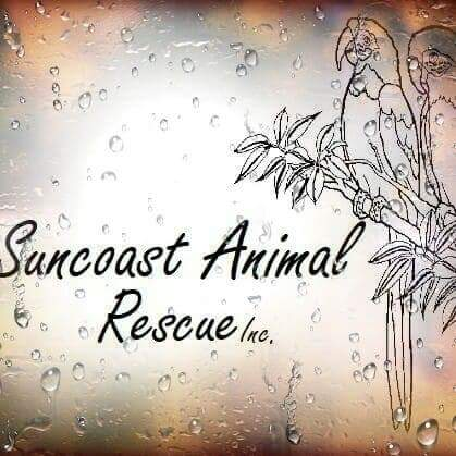 Suncoast Exotic Animal Rescue Inc.