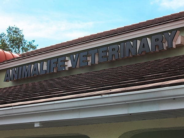 The Animalife Veterinary Center