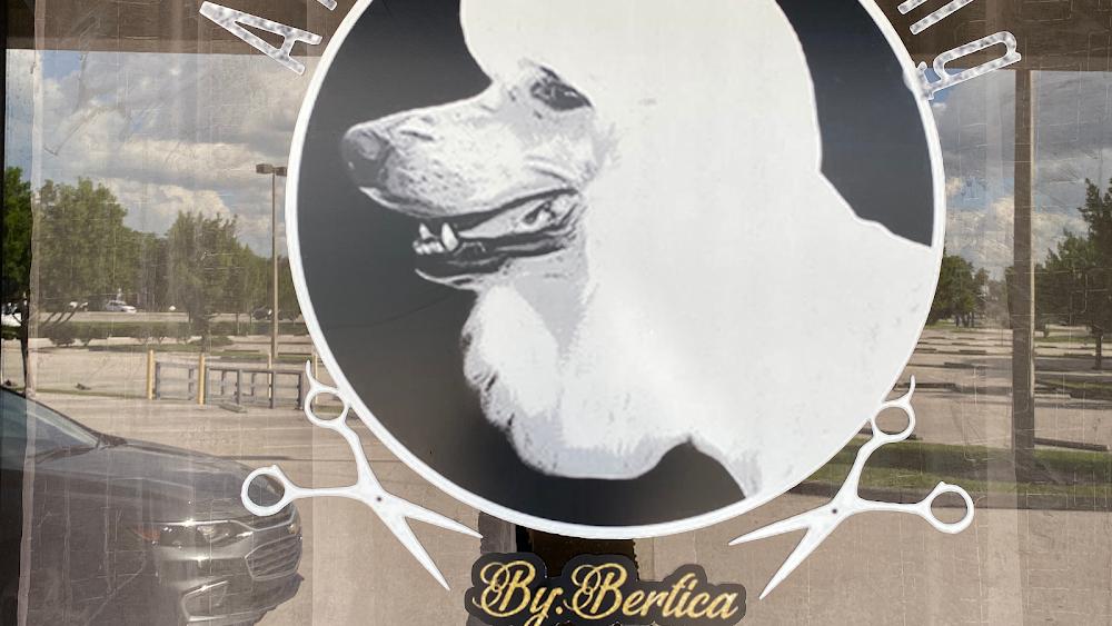 All Pet Grooming by Bertica