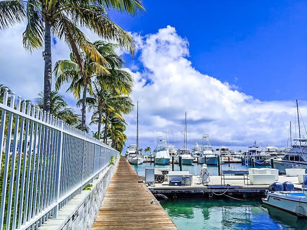 Florida Yachts Charters