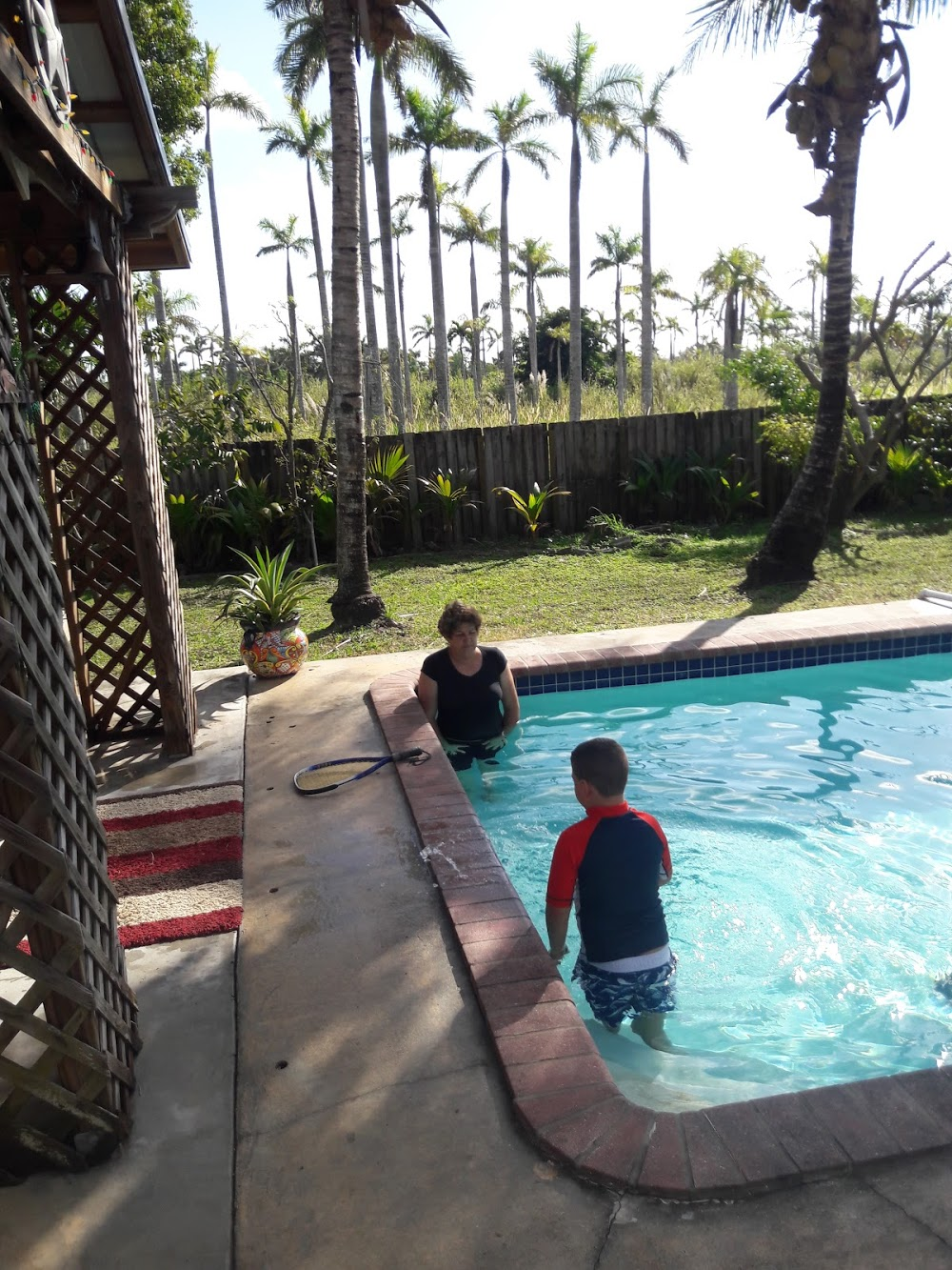 Gator Pools and Spa Construction – Pool Construction