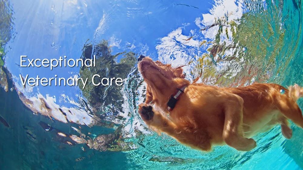 Lifetime Veterinary Center
