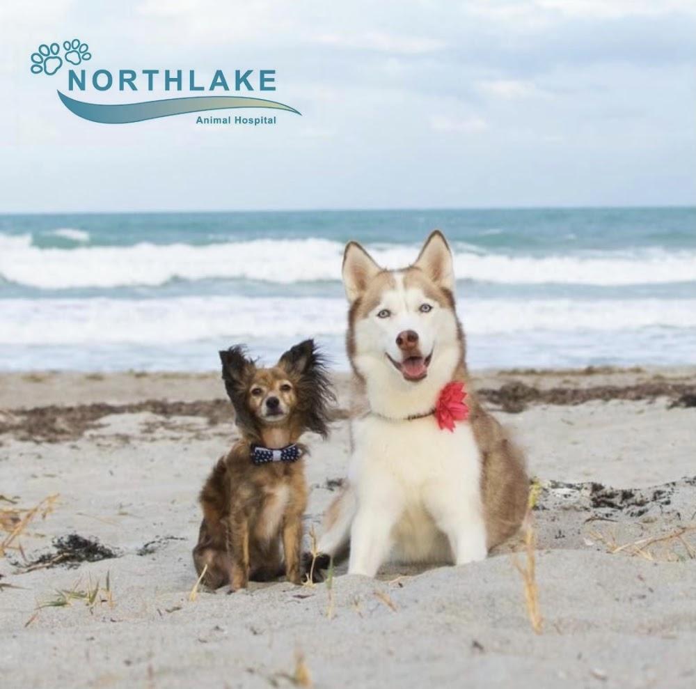 Northlake Animal Hospital