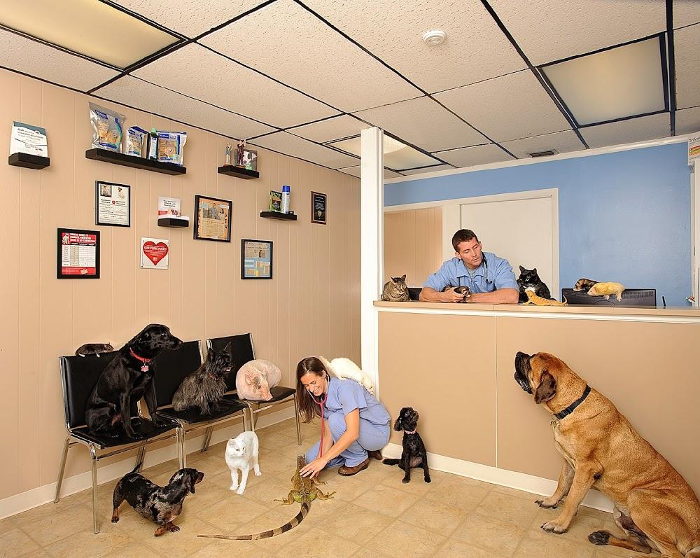 Palm Bay Animal Clinic