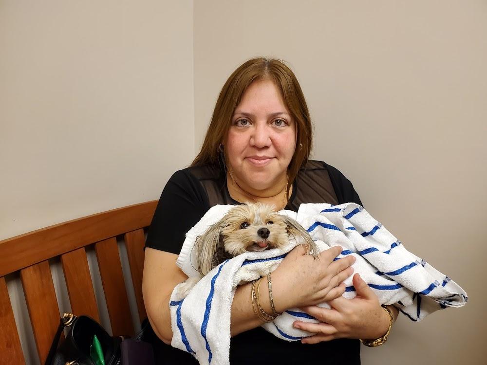 VCA Palm Beach Veterinary Specialists